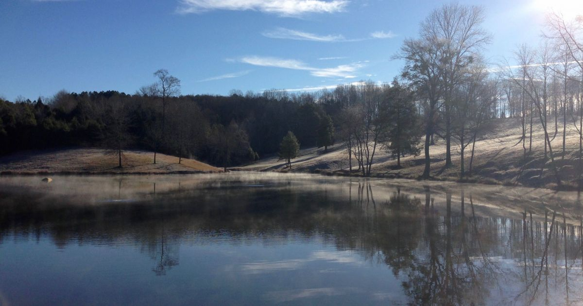 Pond and lake temperature explained platinum ponds for Fishing in greenville sc