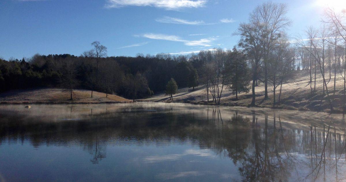 Golf Charlotte Nc >> Pond and Lake Temperature Explained / Platinum Ponds ...